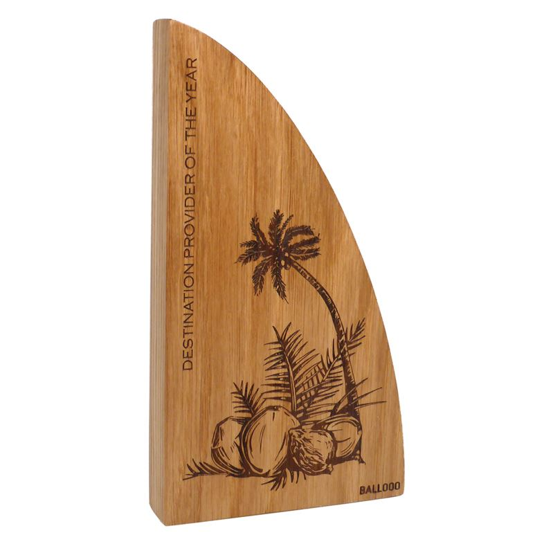 Picture of Real Wood Block Award