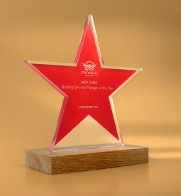 Picture of Freestanding Acrylic Awards with Real Wood Base