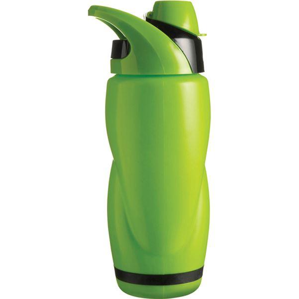 Picture of Bottle with 650ml capacity