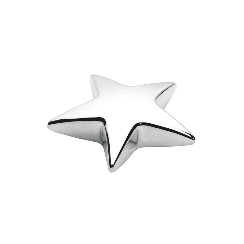 Picture of Star Paperweight