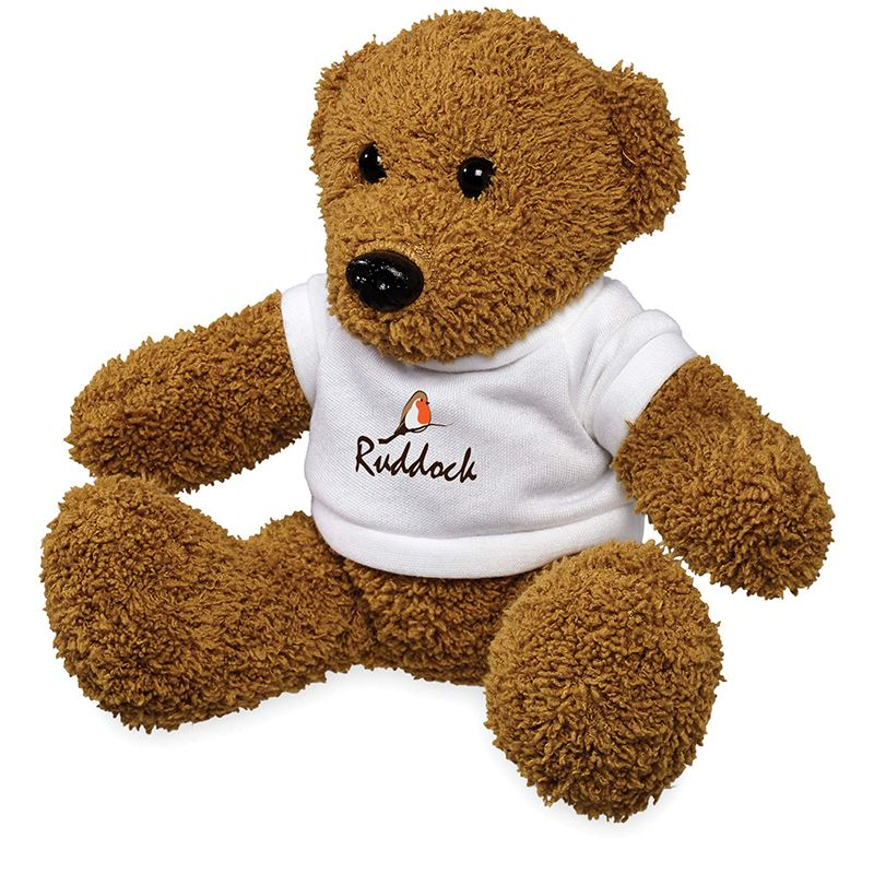 Picture of Plush Rag Bear with Shirt